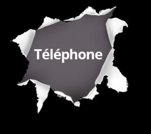 enquêtes marketing en afrique francophone