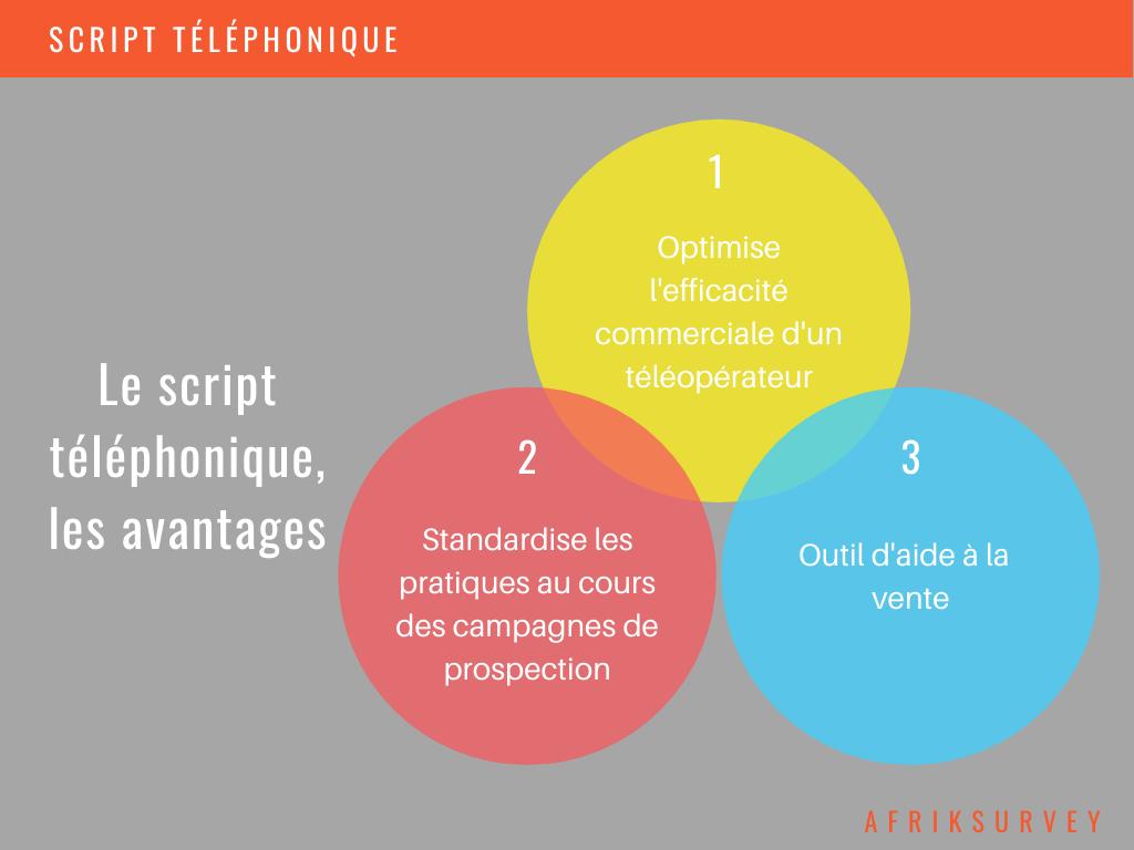 Exemples de script téléphonique